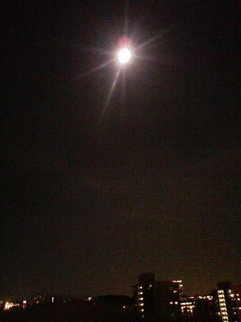 一日遅れの中秋の名月